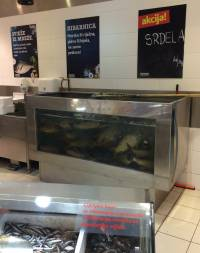 Ribe u pretrpanim akvarijima u trgovini