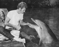 Ric O'Barry - Photo copyright Dolphin Project archives [ 40.02 Kb ]