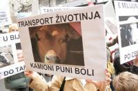 Protest against live animal transport Index.hr 2 [ 86.22 Kb ]