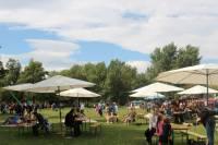 Veggie picnic at Bundek