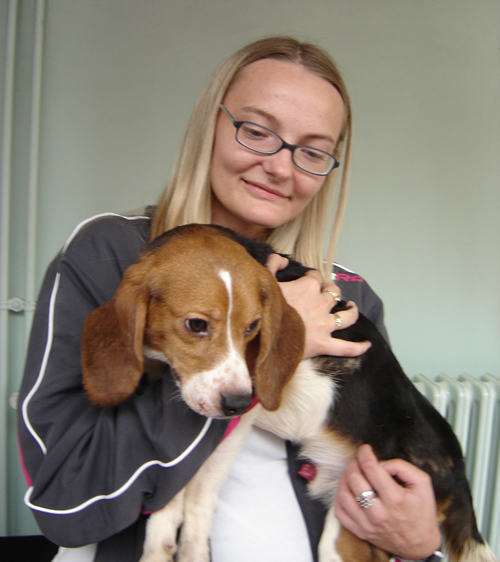 Liberation of the beagles 7