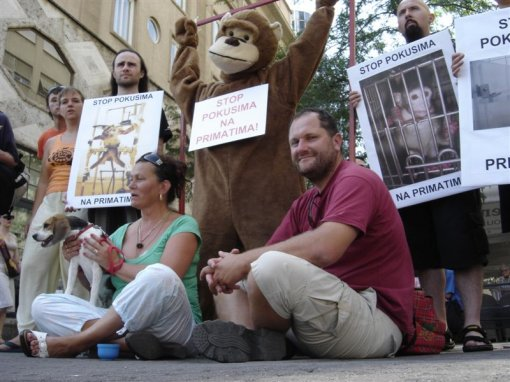 Stop experiments on primates 1