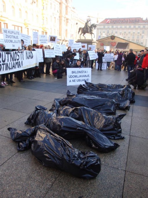 Protest for the implementation of the Animal Protection Act 2011 [ 154.25 Kb ]