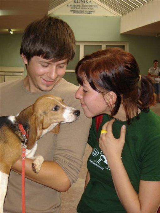 Liberation of the beagles 10