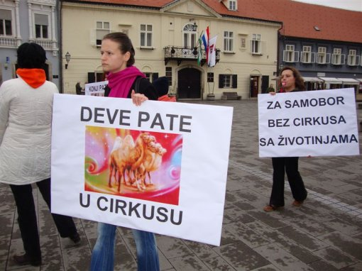 Protest against circuses in Samobor 1 [ 104.69 Kb ]